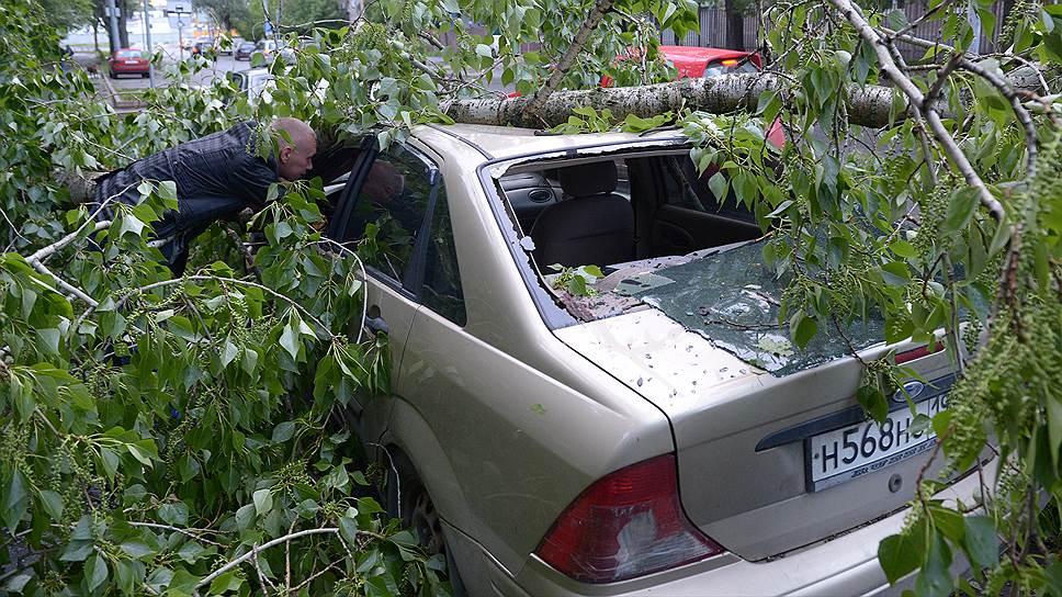 Что делать, если на машину упало дерево