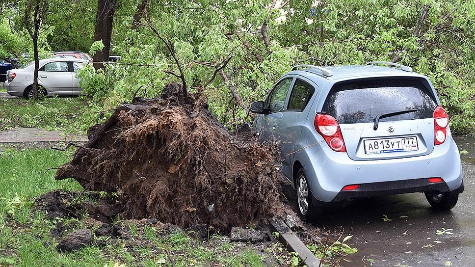 Во сколько страховщики оценивают последствия урагана
