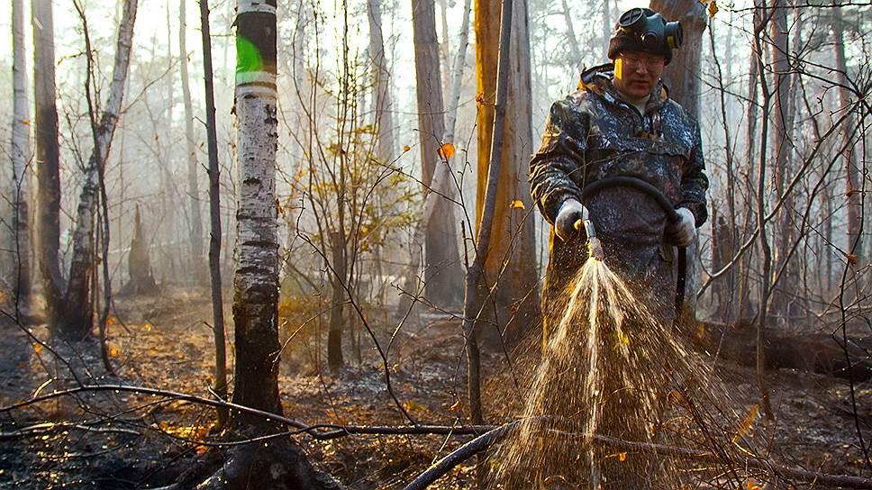 Как повлиял запрет на палы сухой травы на ситуацию с весенними пожарами
