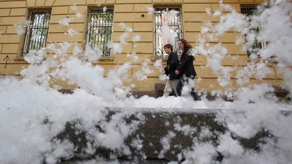 Принято считать, что аллергией страдают всего 15% москвичей, хотя, скорее всего, эта цифра сильно приуменьшена