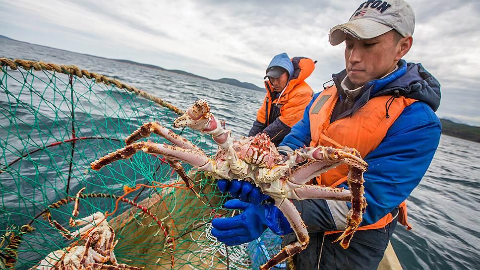 Кто зарабатывает на морском деликатесе