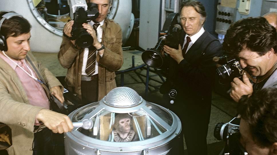 С середины 80-х по середину 90-х 12 макак из сухумского питомника стали космонавтами