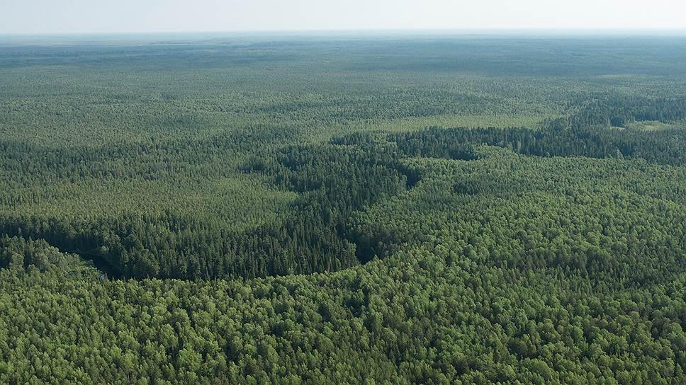 Как был урегулирован спорный статус земель программы «дальневосточного гектара»