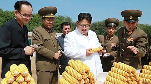 Засуха привела к плохому урожаю в КНДР // Эксперты ООН опасаются острой нехватки продовольствия в стране