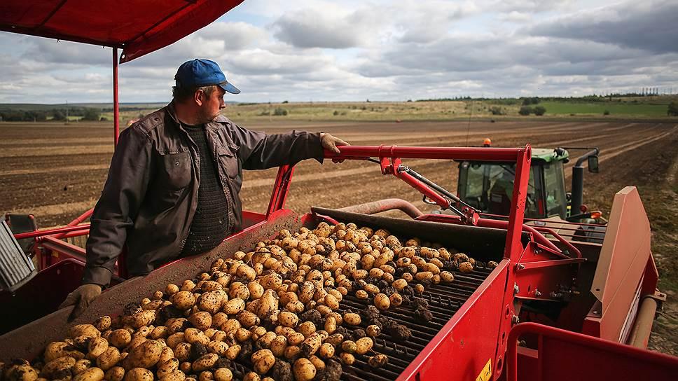 Как агростраховщики пытались удержать объемы сельхозстрахования