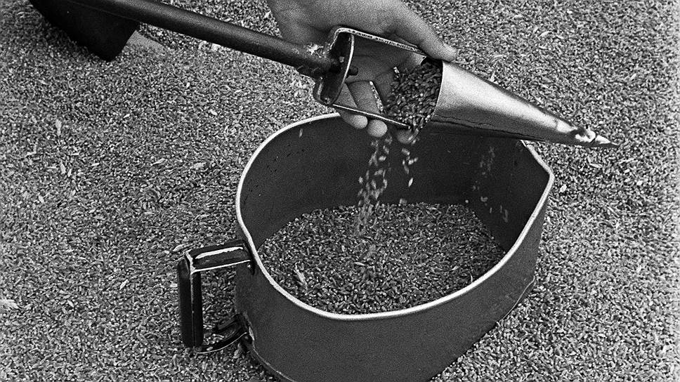 Милиционеры были правы, считая завышение сорности и влажности зерна самым простым способом создания излишков, которые затем уходили «налево»