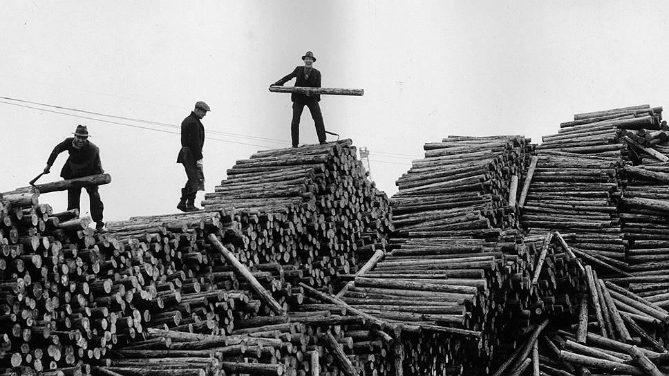 Борьба за дрова человека