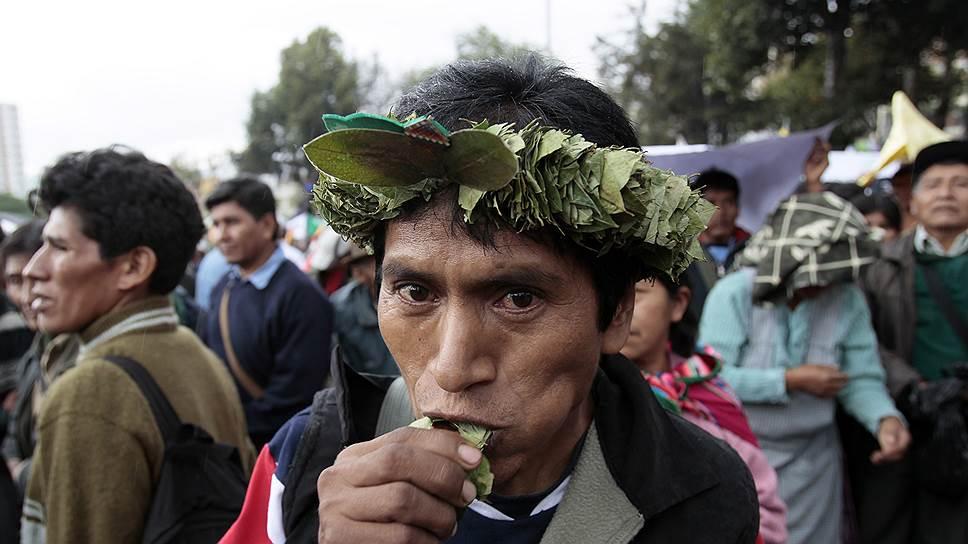 Жевание листьев коки — древняя традиция индейцев, проживающих в предгорьях Анд