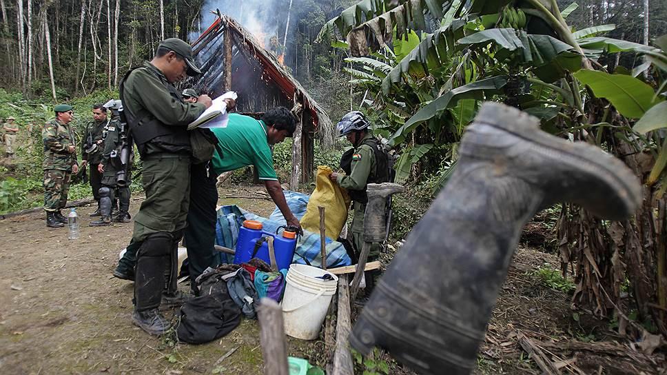 Нелегальные плантации в той же Боливии уничтожаются. Впрочем, без особого эффекта — выращивание коки мигрирует в другие страны