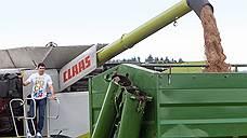 Зерновой штиль