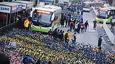 Электробусы ставят на поток