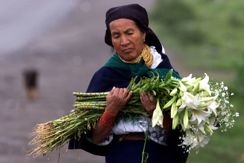 Мировая индустрия производства цветов оценивается в €64,5 млрд в год. Чаще всего их покупают на День святого Валентина, на втором же месте по популярности — Рождество