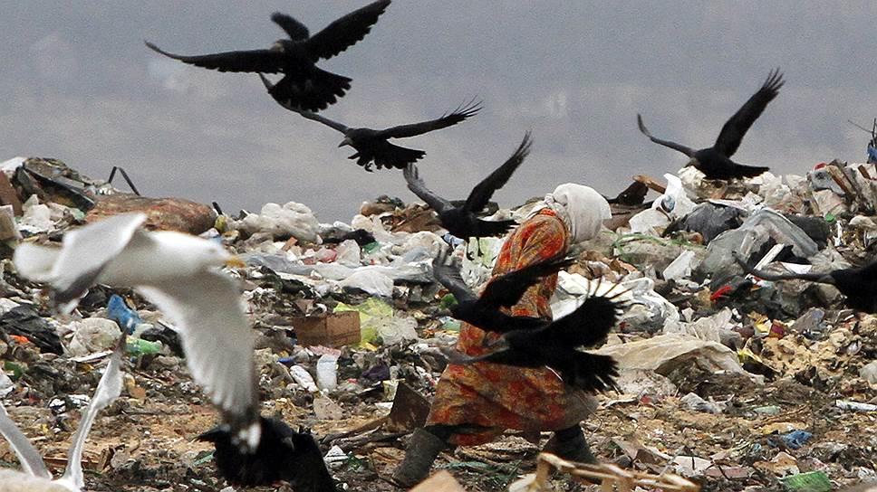 Когда в Подмосковье построят 46 объектов по сортировке мусора