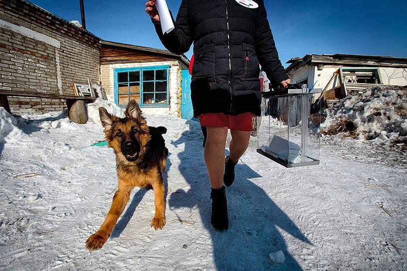 Выездное голосование в селе Сосновка Искитимского района Новосибирской области