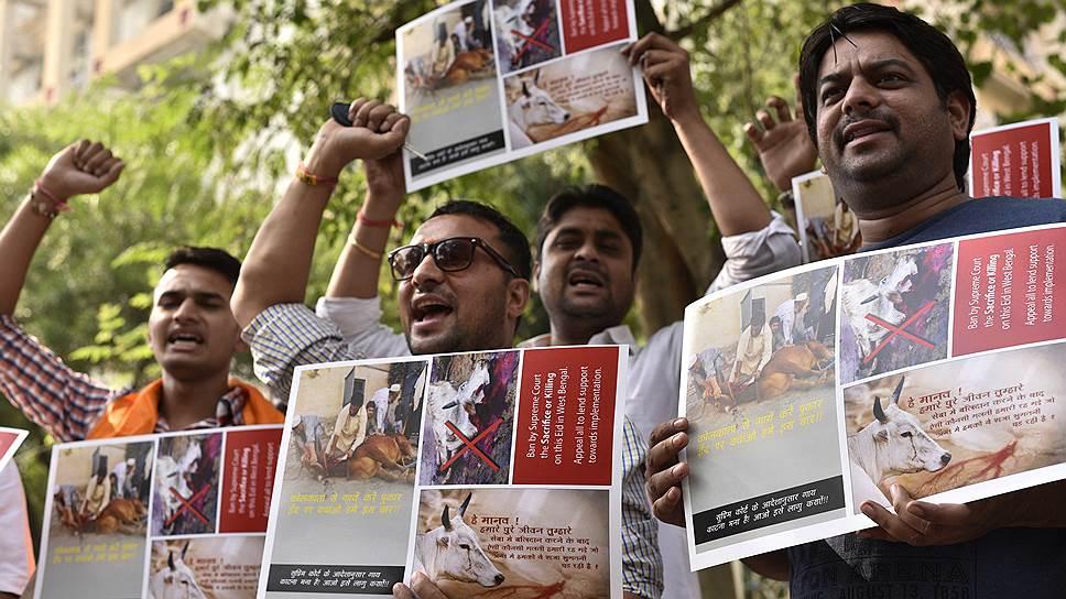Вопрос о святости коров привел к обострению межконфессиональных отношений в некоторых штатах Индии