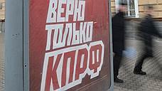 Воронежским выборам нашли грудининца