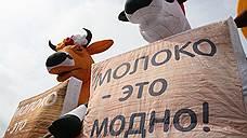 Россия и Белоруссия сливают молоко