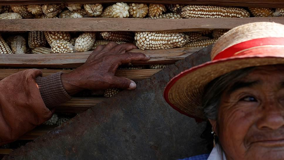 Мексиканские фермеры — одна из жертв глобализации