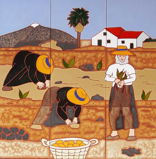 Первыми в Европе картошку распробовали испанцы