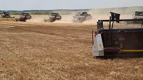 Минсельхоз перебирает пшеницу // Экспортеров беспокоят возможные ограничения поставок