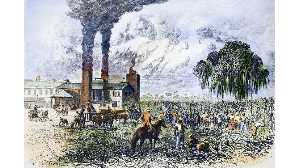В американской Луизиане местные жители сами умели выращивать сахар, поэтому британские угрозы их не очень страшили