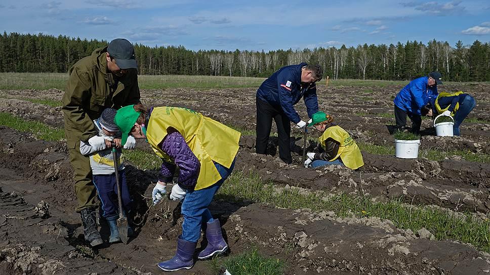 В Госдуме обсудили «лесную» часть нацпроекта «Экология»