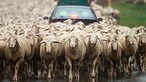 Невинные пробки  / Что трафик на дорогах говорит об экономике страны