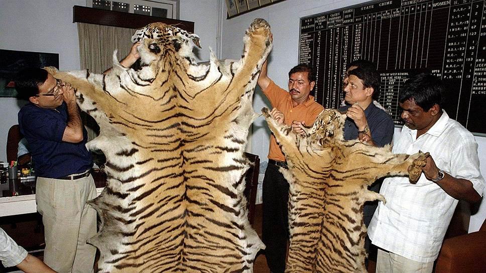 Человек истребляет тигров ради шкур