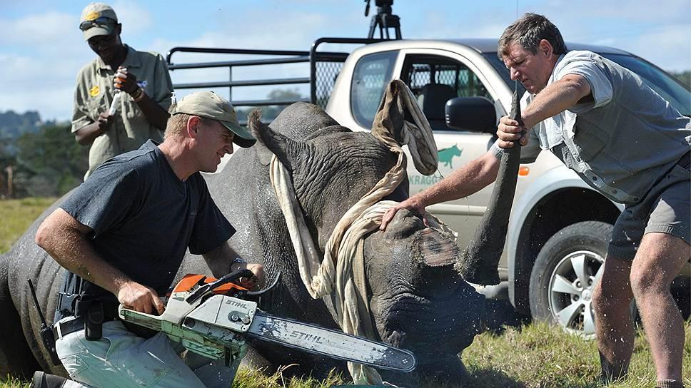 Торговля экзотическими животными — практически везде запрещенный, но при этом сверхприбыльный бизнес
