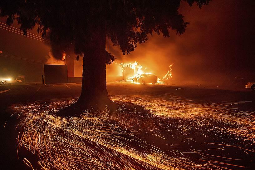 Быстрому распространению огня способствует сильный ветер