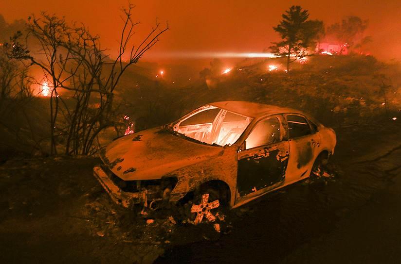По данным на 11 ноября, огонь охватил более 42 тыс. га и уничтожил почти 7 тыс. построек, став самым разрушительным в истории штата