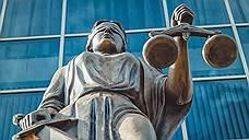 Воронежские адвокаты одержали моральную победу