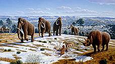 Климат и мамонты