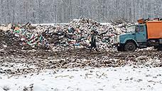 Тамбовский мусор переполнил контейнеры