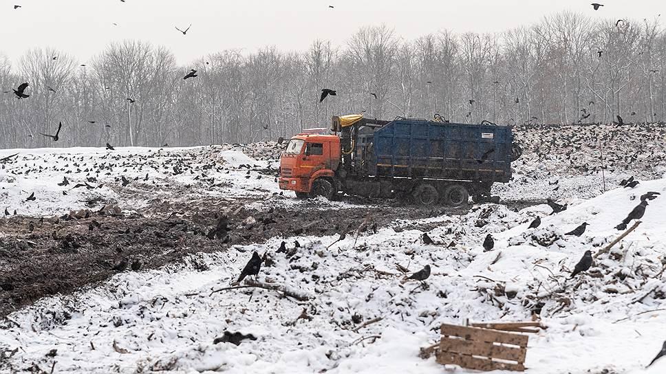 Почему мусорная реформа в регионах началась в Новый год с проблем