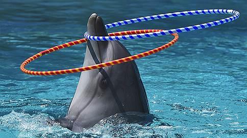 Минкульт вошел в контакт с животным миром // Ведомство разработало правила содержания животных в зоопарках, цирках и дельфинариях