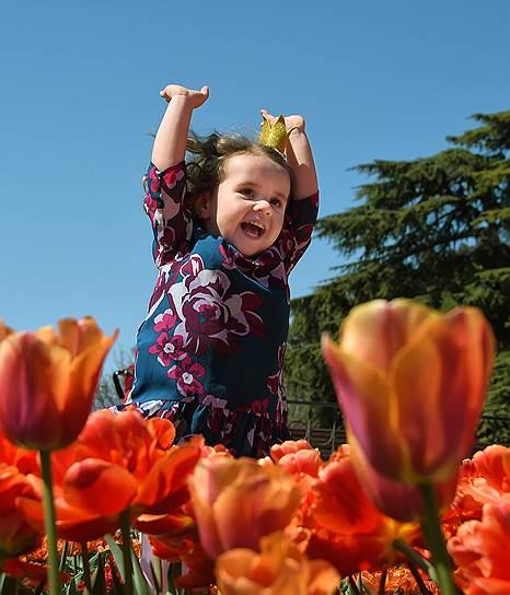 9 апреля, Крым. Выставка «Парад тюльпанов» в Никитском ботаническом саду