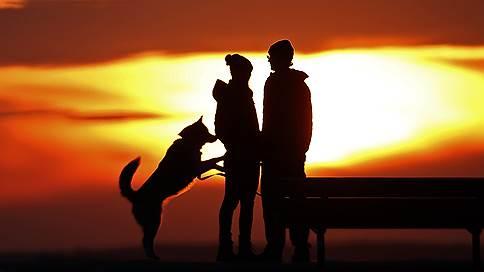 Какие правила существуют в американских семьях и где в Италии лучше выгуливать домашних животных  / Любопытные сообщения и исследования 17–21 июня