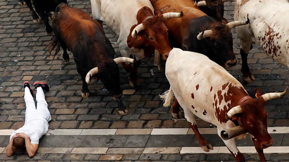 Памплона, Испания. Забег быков на фестивале «Сан-Фермин»