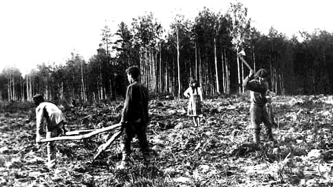 «Благодаря неумелой, беспринципной переселенческой политике»  / Что препятствовало заселению малонаселенной Сибири