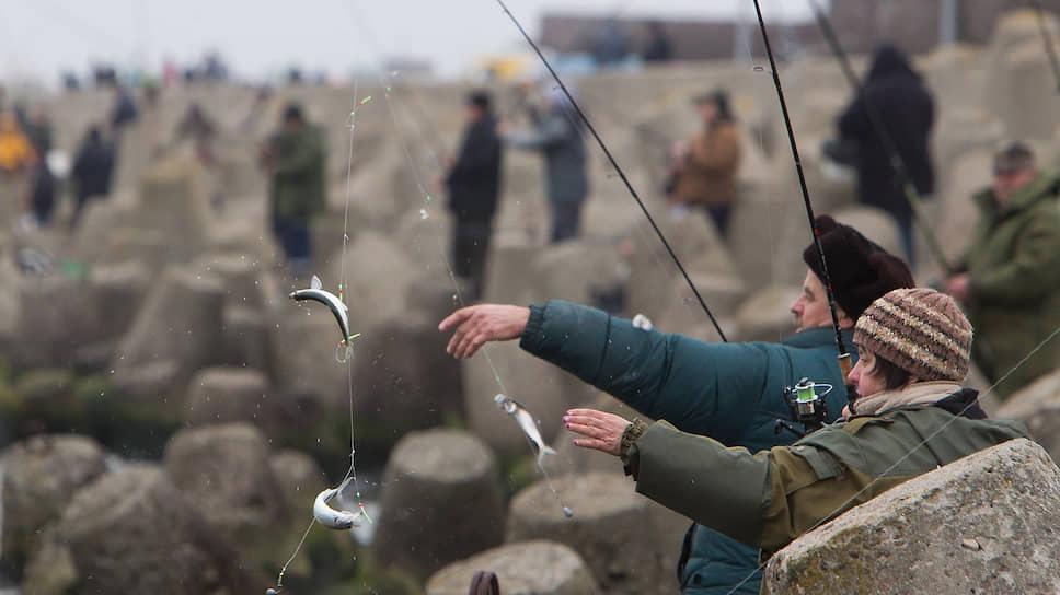 Что ждет рыболовов-любителей в будущем году