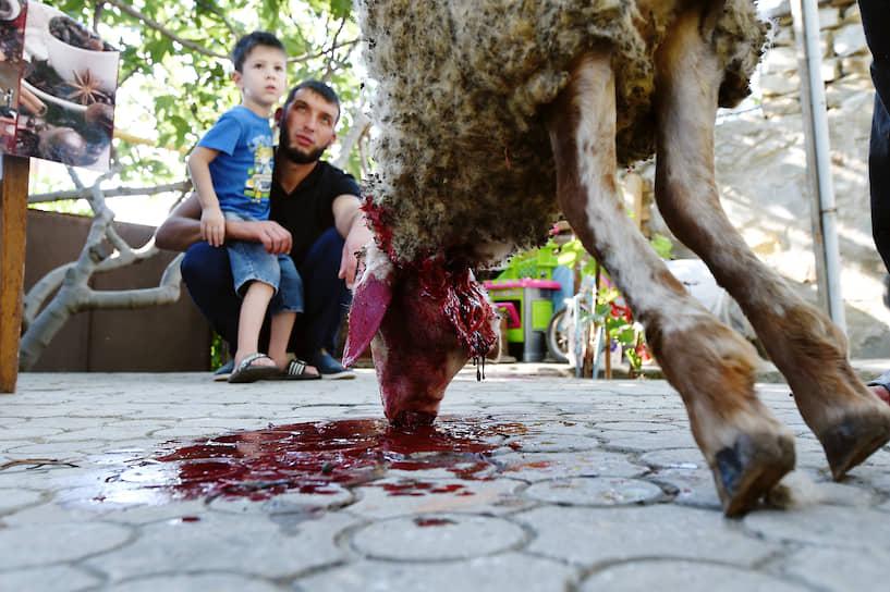 Обряд жертвоприношения в семье крымских татар в честь праздника Курбан-байрам