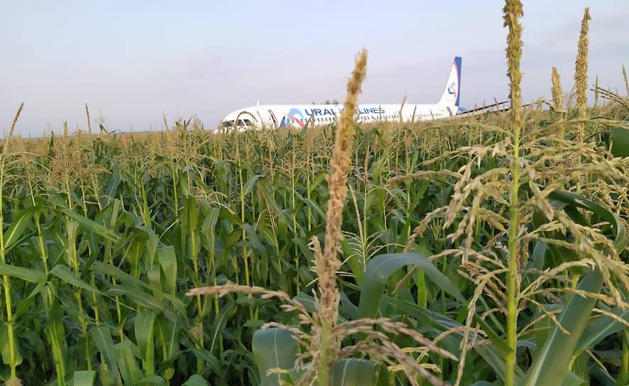 «Уральские авиалинии» сообщили, что произошел отказ силовых установок самолета. Руководство компании убеждено в правильности действий пилотов