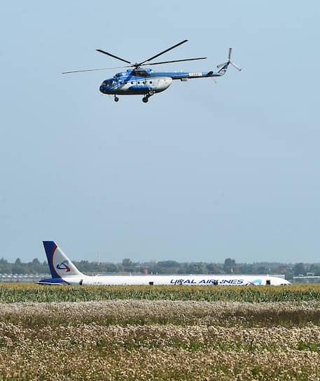 Московская область, Россия. Самолет Airbus A321 после жесткой посадки в кукурузном поле