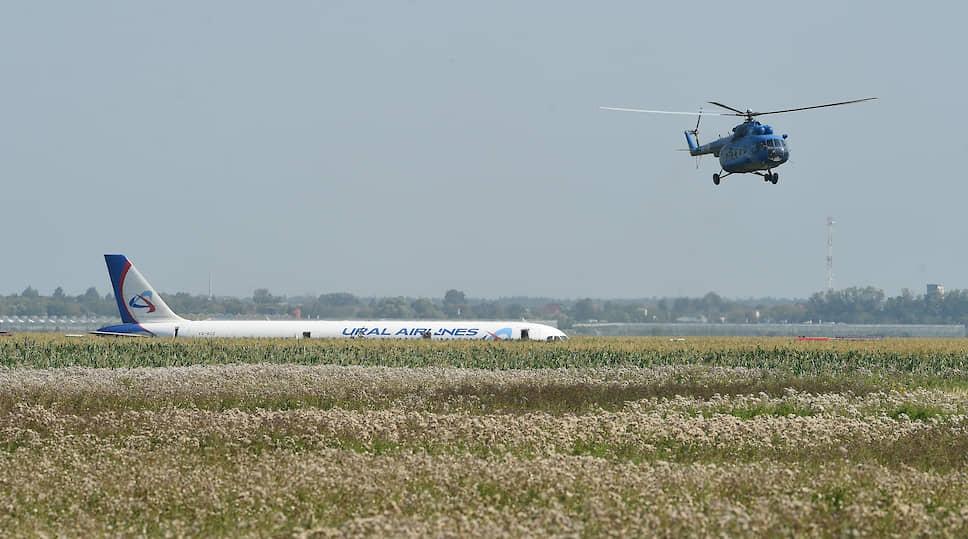 Росавиация и МЧС сообщили, что причиной экстренной посадки стал отказ двигателя, который загорелся из-за попадания в него птицы