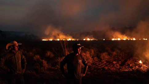 Бразильской армии приказано прекратить огонь  / На борьбу с лесными пожарами брошены войска