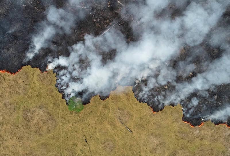 Порту-Велью, Бразилия. Пожар в джунглях
