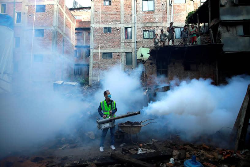 Катманду, Непал. Мероприятия по профилактике лихорадки денге