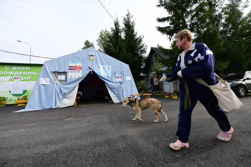 Избирательный участок в палатке МЧС на территории СНТ «Флора-2» в Ленинградской области