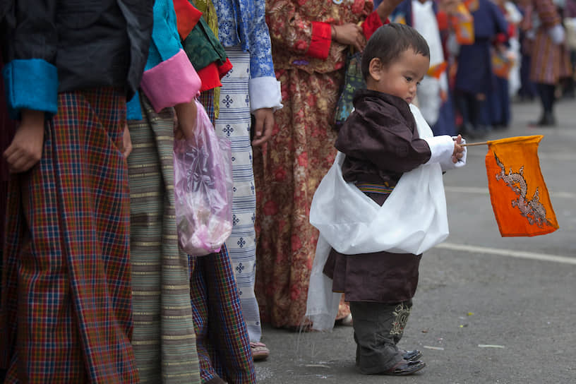 В Бутане существует две зарегистрированные политические партии. Остальные, значительное количество которых было основано в изгнании, остаются незарегистрированными или запрещенными. Одна из таких  — «Драконовый национальный конгресс», основанная в Непале беженцами из Бутана. Символом как страны, так и партии является дракон